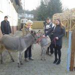 Besuch von tiergestützter Therapie in Haina (Kloster)